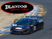 blackdog speed shop thumb